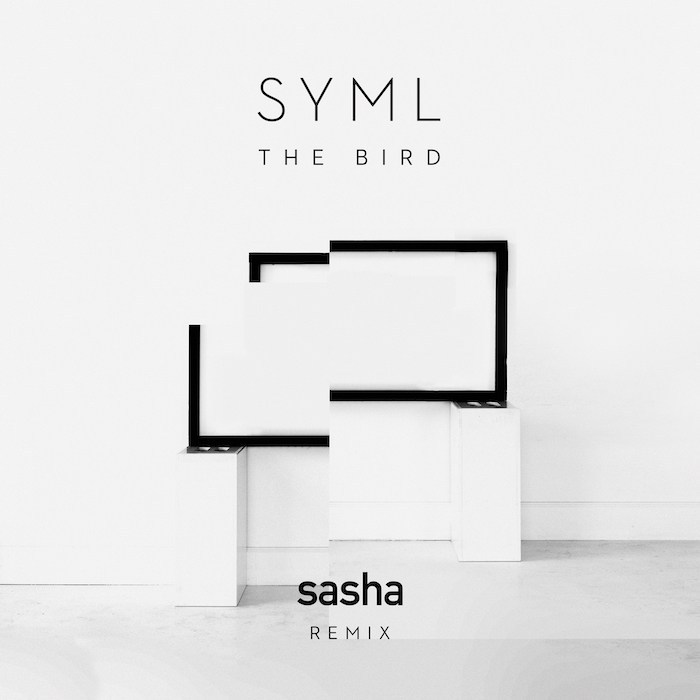Sasha The Bird